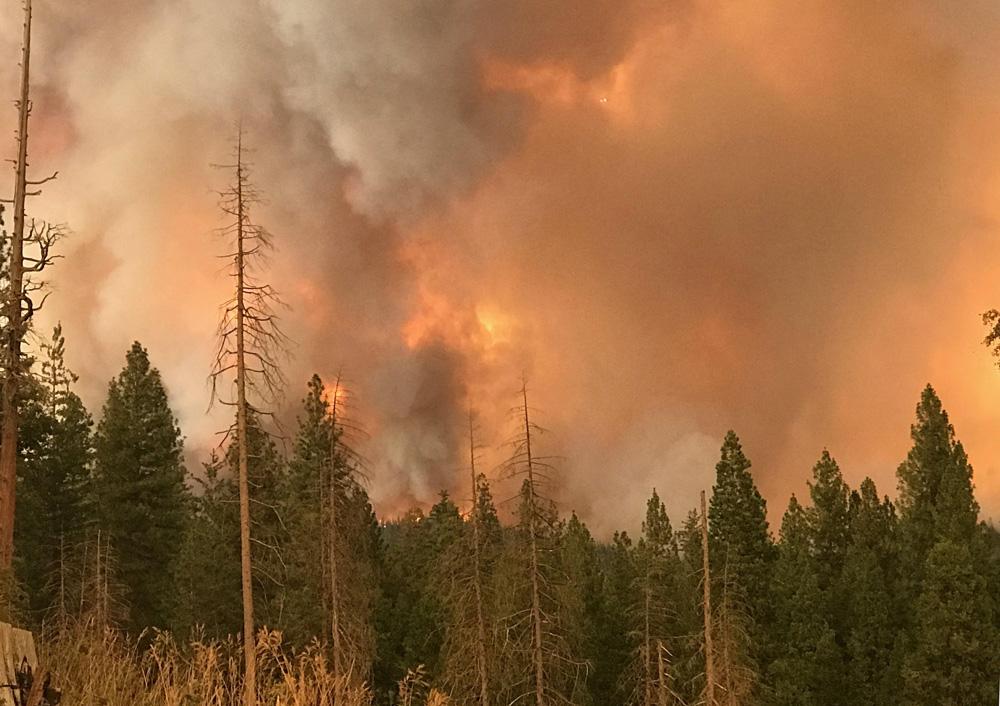 Ferguson Fire near Mariposa Pines 7 18 18 2