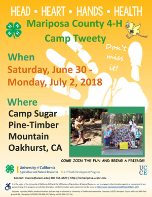 2018 camp flyer ad