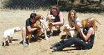 Mariposa SPCA Needs Your Help