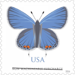 Butterfly Stamp to Alight On Post Office Locations Across Nation