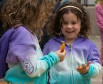 Photo of the Day - April 27, 2016 - Mariposa Butterfly Festival in Mariposa County