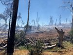 Sierra National Forest Fish Fire Tuesday Afternoon Update: 85 Acres and 50% Containment