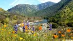 Memorial Day Safety Message from the Sierra National Forest