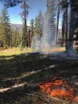 Yosemite National Park September 20, 2018 Update on Small Wildfires Burning in the Park