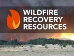 California State Recovery Operations Launch New Online Tool: Debris Dashboard to Track Wildfire Cleanup Progress