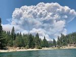 Public Invited to California Wildfire Safety Advisory Board's Virtual Quarterly Meeting