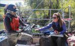 Biologists Say Predators Eat Half of Salmon, California Farm Bureau Federation Reports