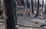 Dead Trees Fuel Wildfire Severity in Sierra Nevada – UC Davis Study Highlights the Role of Forest Fuels Amid a Warming Climate