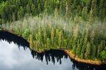 USDA Exempts Tongass National Forest in Alaska from the 2001 Roadless Rule