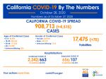 California State Officials Announce Latest COVID-19 Facts for Wednesday Afternoon, October 28 – 908,713 (Up 4,515 Over Tuesday's Report) Confirmed Cases, 17,475 Deaths (Up 75 Over Tuesday's Report)